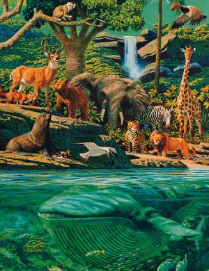 Animals Mormon